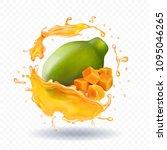 papaya juice splash realistic... | Shutterstock .eps vector #1095046265
