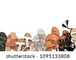 set of various leather sandals... | Shutterstock . vector #1095133808