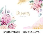 hand drawing isolated... | Shutterstock . vector #1095158696