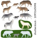 collection of different species ... | Shutterstock .eps vector #1095165098