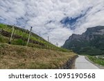 vineyards on the background of... | Shutterstock . vector #1095190568