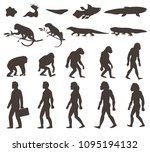 human evolution darwin theory...   Shutterstock .eps vector #1095194132