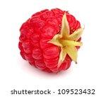Fresh raspberry in closeup - stock photo