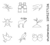 forest beast icons set. outline ... | Shutterstock . vector #1095277136