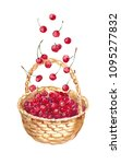 Watercolor Basket With Cherry ...