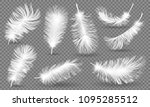 realistic fluffy feathers.... | Shutterstock .eps vector #1095285512