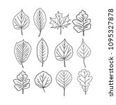 tree leaves. black and white... | Shutterstock .eps vector #1095327878