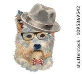 the west highland white terrier ... | Shutterstock . vector #1095369542