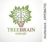 tree brain concept  the wisdom...   Shutterstock .eps vector #1095386732