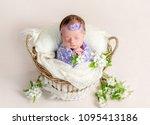sleeping newborn baby girl... | Shutterstock . vector #1095413186