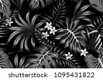 tropical  black and white... | Shutterstock .eps vector #1095431822