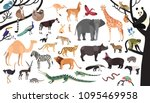 collection of exotic animals... | Shutterstock .eps vector #1095469958