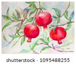 red pomegranate fruits with... | Shutterstock . vector #1095488255