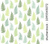 fern frond herbs  tropical... | Shutterstock .eps vector #1095545072