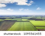 field as a background.... | Shutterstock . vector #1095561455