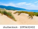 grass on sand dunes at paloma... | Shutterstock . vector #1095632432