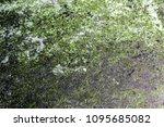 background texture of the metal ...   Shutterstock . vector #1095685082