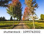 vancouver  bc   canada  ...   Shutterstock . vector #1095762032