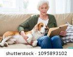 portrait of white     haired... | Shutterstock . vector #1095893102