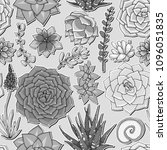 succulents seamless pattern.... | Shutterstock .eps vector #1096051835
