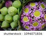 bangkok flower market  pak...   Shutterstock . vector #1096071836
