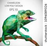 vector design of chameleon in... | Shutterstock .eps vector #1096089326