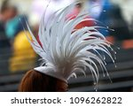 a lady in a hat at a horse race. | Shutterstock . vector #1096262822