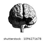 brain engraving monochrome... | Shutterstock .eps vector #1096271678