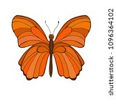 big orange butterfly isolated... | Shutterstock .eps vector #1096364102