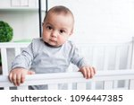 close up portrait of adorable... | Shutterstock . vector #1096447385