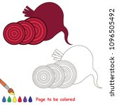 beet root to be colored  the... | Shutterstock .eps vector #1096505492