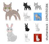 toy animals cartoon black flat... | Shutterstock . vector #1096550186
