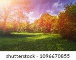 summer trees growing in a... | Shutterstock . vector #1096670855