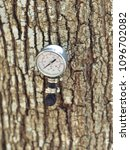 Small photo of Maple tree with tap (spile) and temperature reader. Isolated close up bright image.