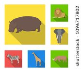 different animals flat icons in ... | Shutterstock .eps vector #1096717802