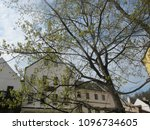 old building in europe with... | Shutterstock . vector #1096734605