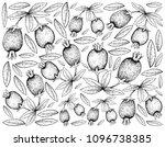 tropical fruits  illustration... | Shutterstock .eps vector #1096738385