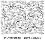 tropical fruits  illustration... | Shutterstock . vector #1096738388