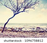 romantic atmosphere colorful... | Shutterstock . vector #1096758812