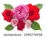 Stock photo beautiful rose flowers arrangement isolated on white background 1096776938