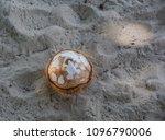 drinking coconut at summer day... | Shutterstock . vector #1096790006