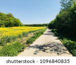 parks and landscapes of... | Shutterstock . vector #1096840835