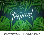 tropical. modern design layout...