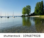 wildlife and nature of... | Shutterstock . vector #1096879028