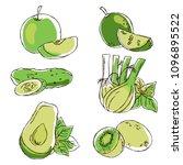 vector contour color green... | Shutterstock .eps vector #1096895522