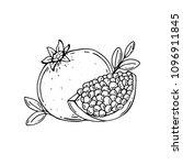 pomegranate. half of...