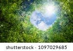 green leaves background  blue... | Shutterstock . vector #1097029685