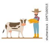Dairy Farm  Farmer Give Straw...