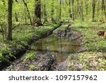 puddle on dirt old road in... | Shutterstock . vector #1097157962