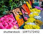 gerber daises on the market ... | Shutterstock . vector #1097172452